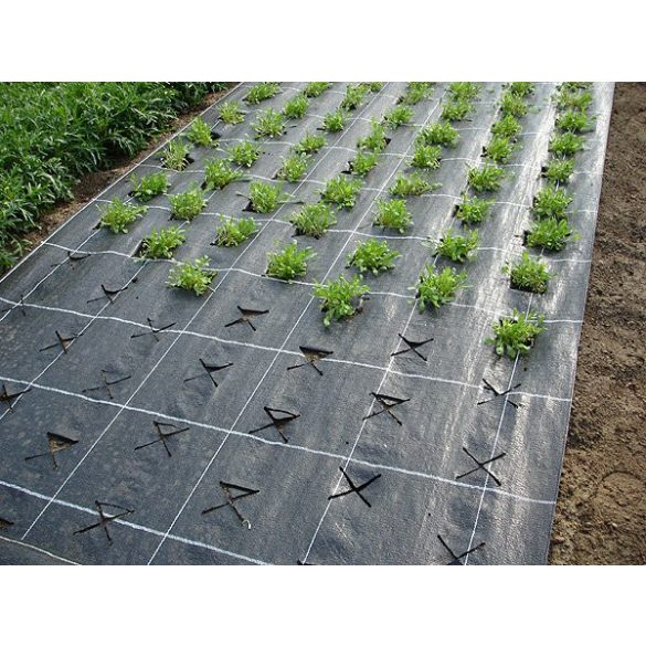 Agroszövet 1,25m/100m