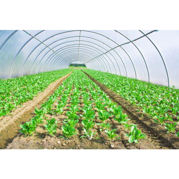 Mezőgazdasági fólia 8,5/60/0,15 UV stabil